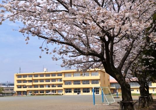 神奈川県 海老名市立 社家小学校